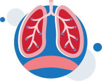 ventilation-normal-breathing-lungs-illustration